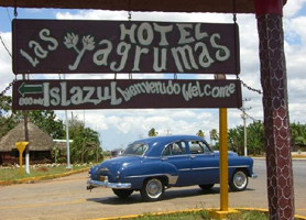 Las yagrumas Havana